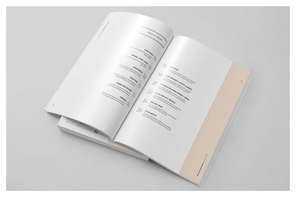 A4尺寸企业项目提案画册模板素材Proposal 005插图(2)