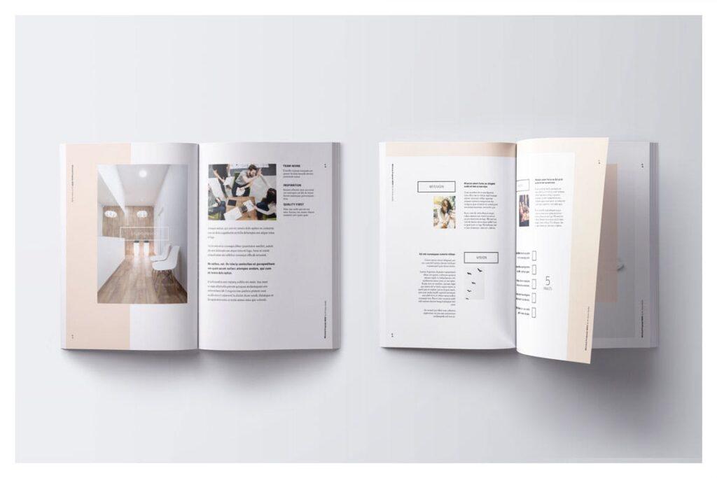 A4尺寸企业项目提案画册模板素材Proposal 005插图(3)