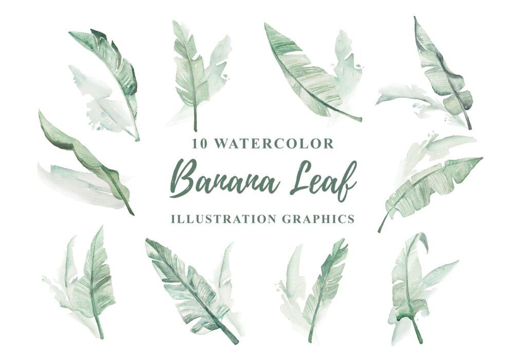 10个绿植水彩香蕉叶装饰元素模版素材下载10 Watercolor Banana Leaf Illustration Graphics插图