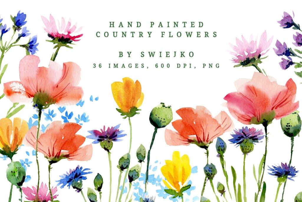 手绘水彩画的乡村花卉装饰图案纹理素材Watercolor Country Flowers插图