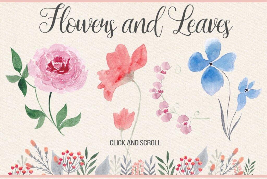 水彩花卉枝干装饰图案/婚礼邀请函装饰图案素材Watercolor Floral Design Kit插图(1)