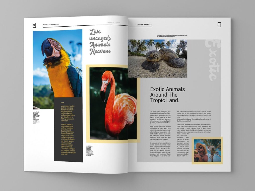 简约大气旅游杂志传单海报模板素材下载Tropika Magazine Template插图(6)