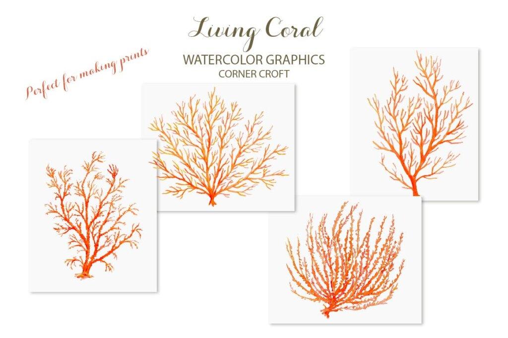 海洋动植物水彩剪纸活珊瑚装饰图案纹理素材Watercolor clipart living Coral插图(6)